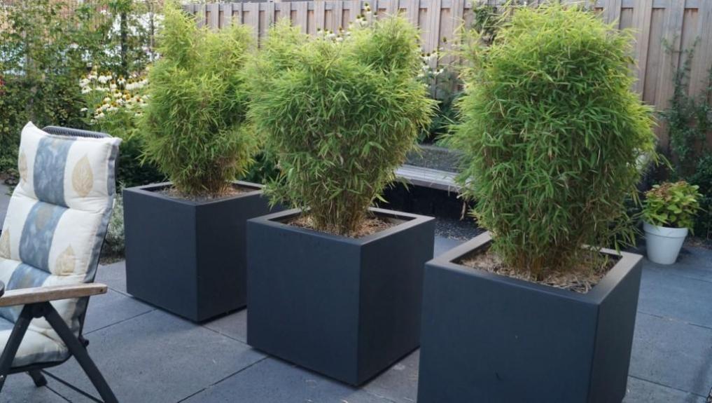 Tuinontwerp kleine tuin met flexibel terras  Vicas