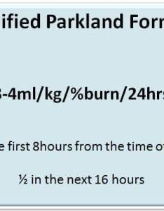 Parkland formula also fluid resuscitation  vic burns rh vicburns