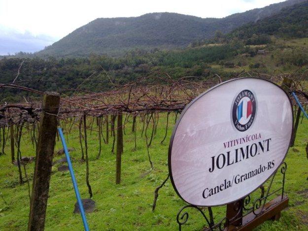 vinícola em gramado e canela