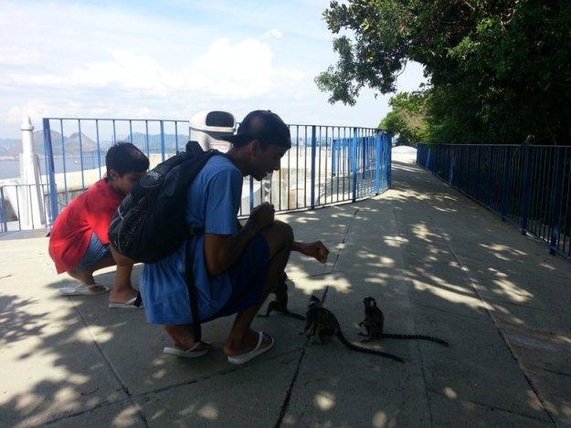 menino alimenta mico Forte do leme