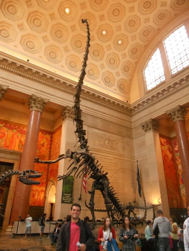 Esqueleto de dinossauro no Museu de História Natural. Foto: Marcelle Ribeiro