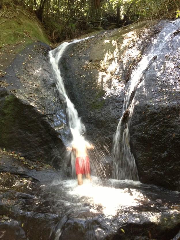 Maridão se refrescando na cachoeira do núcleo Engordador. Foto: Marcelle Ribeiro