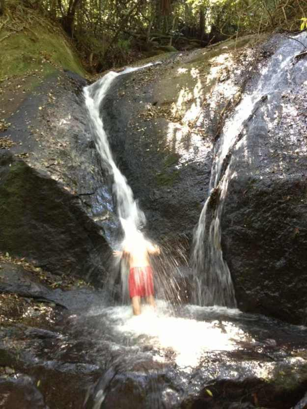 parque da cantareira trilhas cachoeira