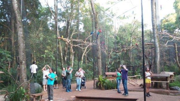 pontos turisticos de foz do iguacu parque das aves