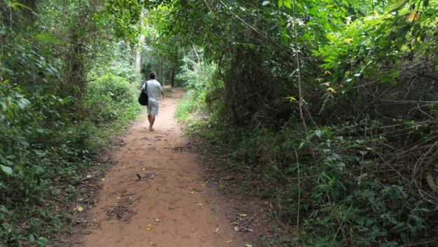 trilha sendero macuco