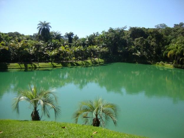 Jardim de Inhotim. Foto: Marcelle Ribeiro