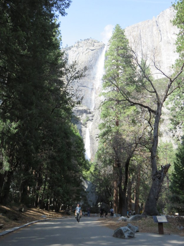Upper e Lower Yosemite Falls. Foto: Marcelle Ribeiro