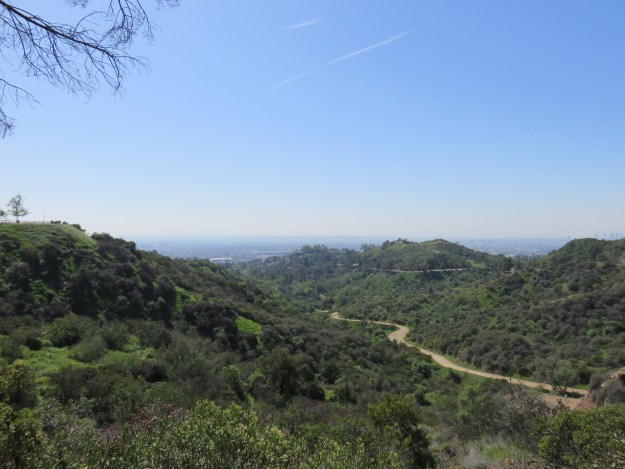 Griffith Park, em Los Angeles. Foto: Marcelle Ribeiro