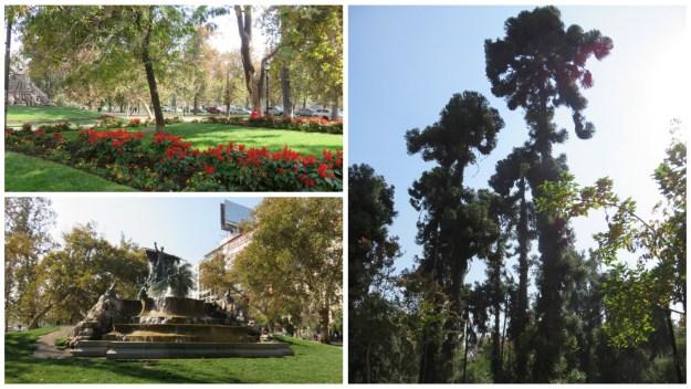 Parque Florestal, em Santiago. Foto: Marcelle Ribeiro.