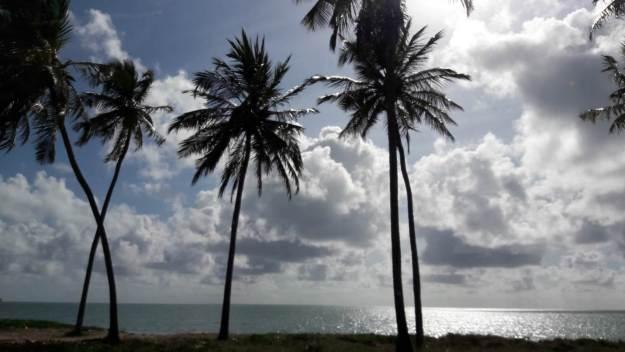 Vista de parte da estrada entre Recife e Japaratinga. Foto: Marcelle Ribeiro