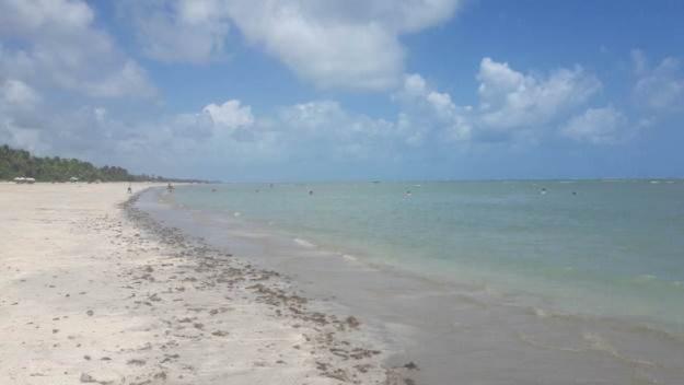 o que fazer em são miguel dos milagres praia toque