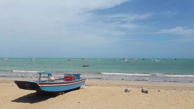 O mar calmo da praia de Japaratinga. Foto: Marcelle Ribeiro