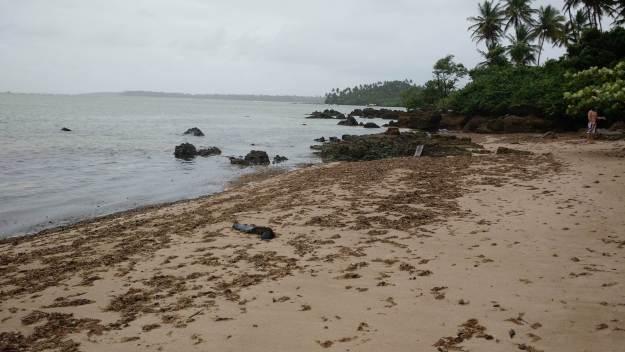 Trilha para a praia de Moreré, na Ilha de Boipeba. Foto: Antônio Carlos de Souza.