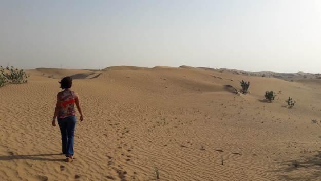 Safári no deserto de Dubai. Foto: Guilherme Calil.
