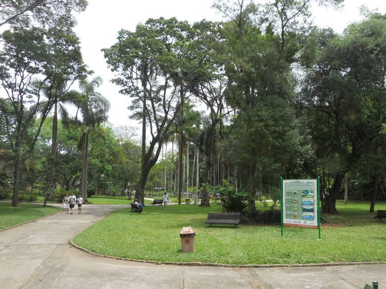 o que fazer em sp jardim botânico organizado