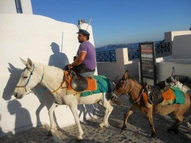 O que fazer em Santorini, transporte