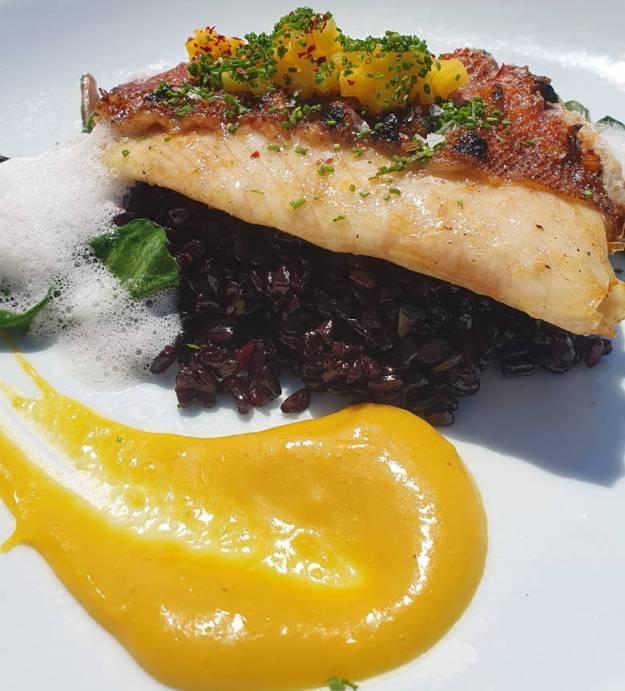 peixe arroz negro onde comer em búzios
