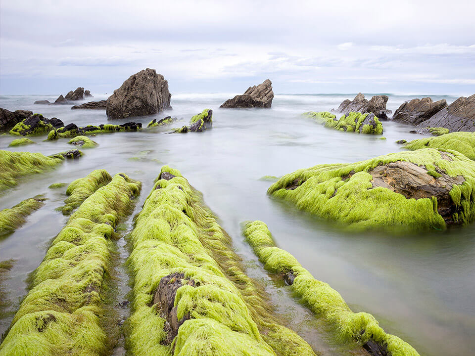 Vicinay-Sestao-offshore-mooring services-cadenas-mooring chains-safety-innovacion-innovation-marine-environment-medio ambiente
