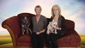 Adopt-A-Pet Program