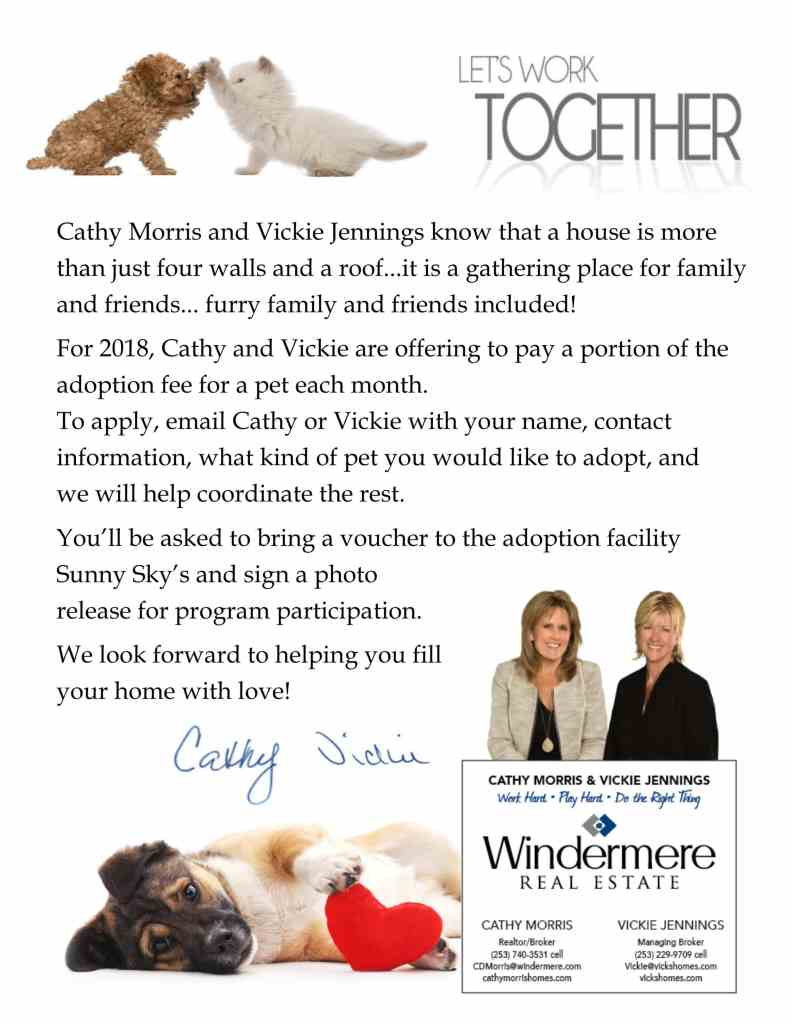 Pet Adoption Ad