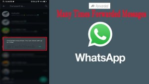 WhatsApp new update forwarded messages