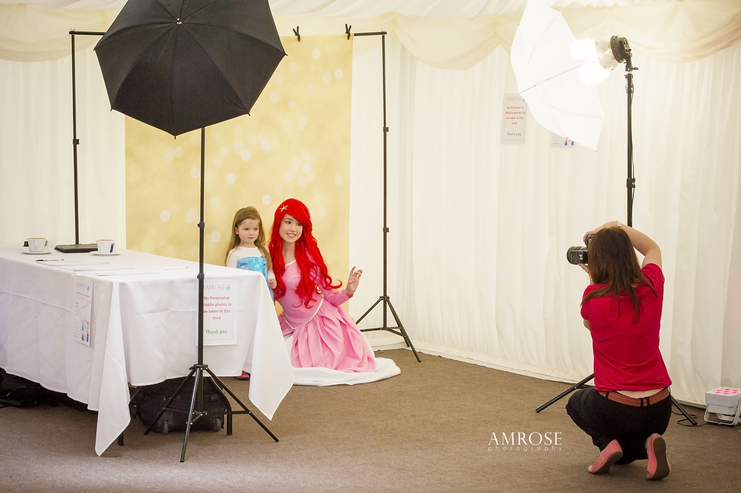 chair covers hire shropshire white and gold may 2015  wedding photography