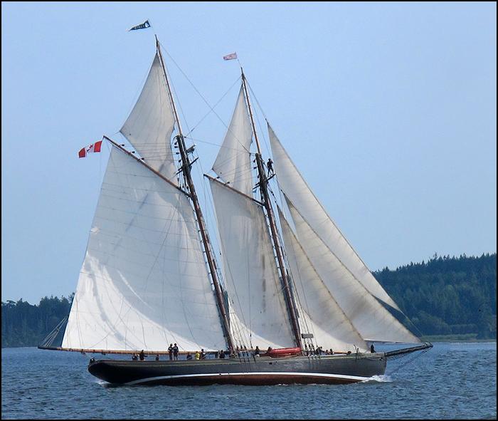 S.A.L.T.S. sail training vessel Pacific Grace