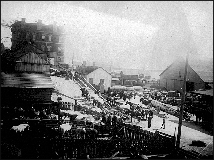 Wharf Street's Enterprise Dock with the Dominion Customs House in the background