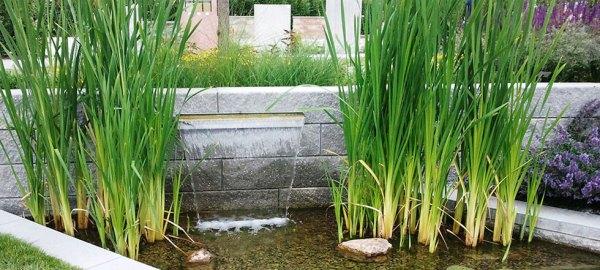 dazzling water fountain ideas