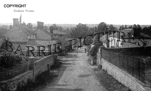 Buckhorn Weston, Village c1908