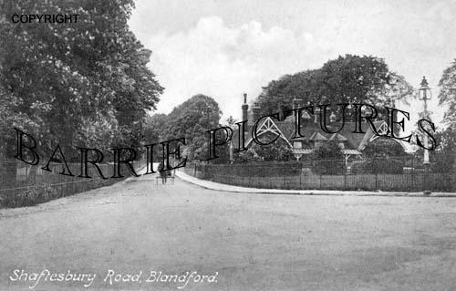 Blandford, Shaftesbury Road c1910