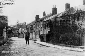 Bradpole, Village c1930