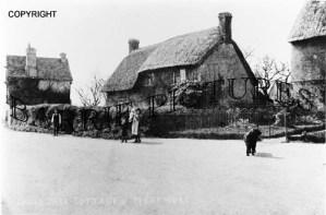 Marnhull, Cross Tree Cottages c1910