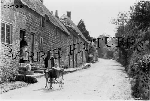 Stoke Abbot, Village c1920