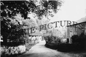 Symondsbury, Village c1930