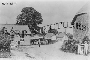 Winterborne Kingston