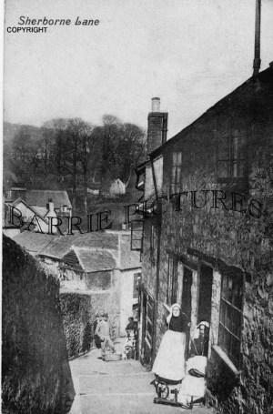 Lyme Regis, The Lane c1910