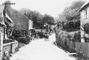Stoke Abbot, Village c1890
