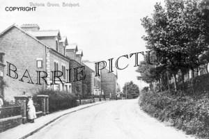Bridport, Victoria Grove c1910