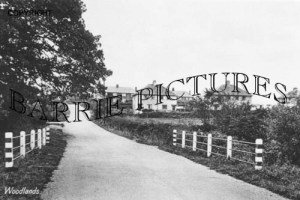 West Moors, Woodlands c1950
