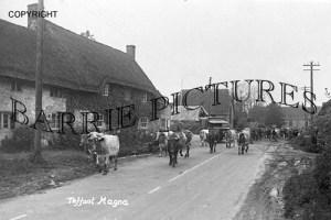 Teffont Magna, Village c1950