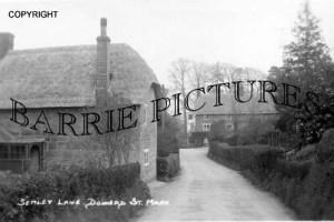 Donhead St Mary, Semley Lane c1920