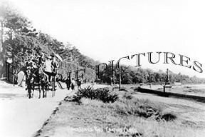 Canford Cliffs, Sandbanks Road c1910