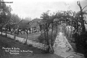 Tuckton, Newlyn and Balls Tea Gardens and Boating c1930