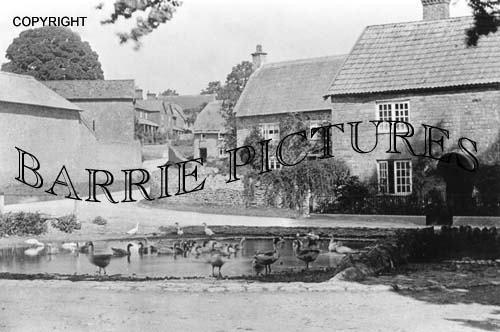 Charlton Horethorne, Village Pond c1920