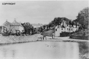 Compton Martin, Village Pond c1910