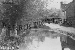 Puriton, Village Pond c1900