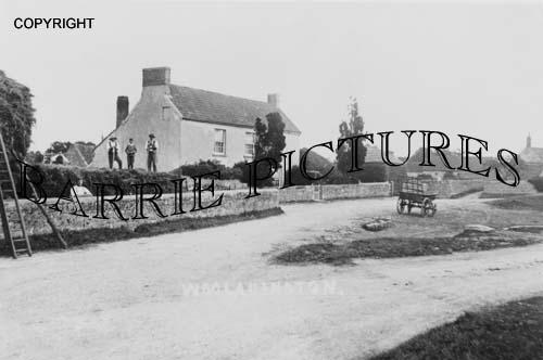 Woolavington, Village c1900