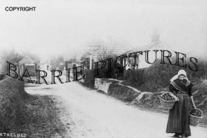 Athelney, Village c1890