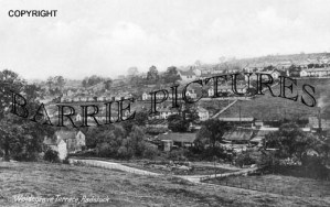 Radstock, Waldegrave Terrace c1930
